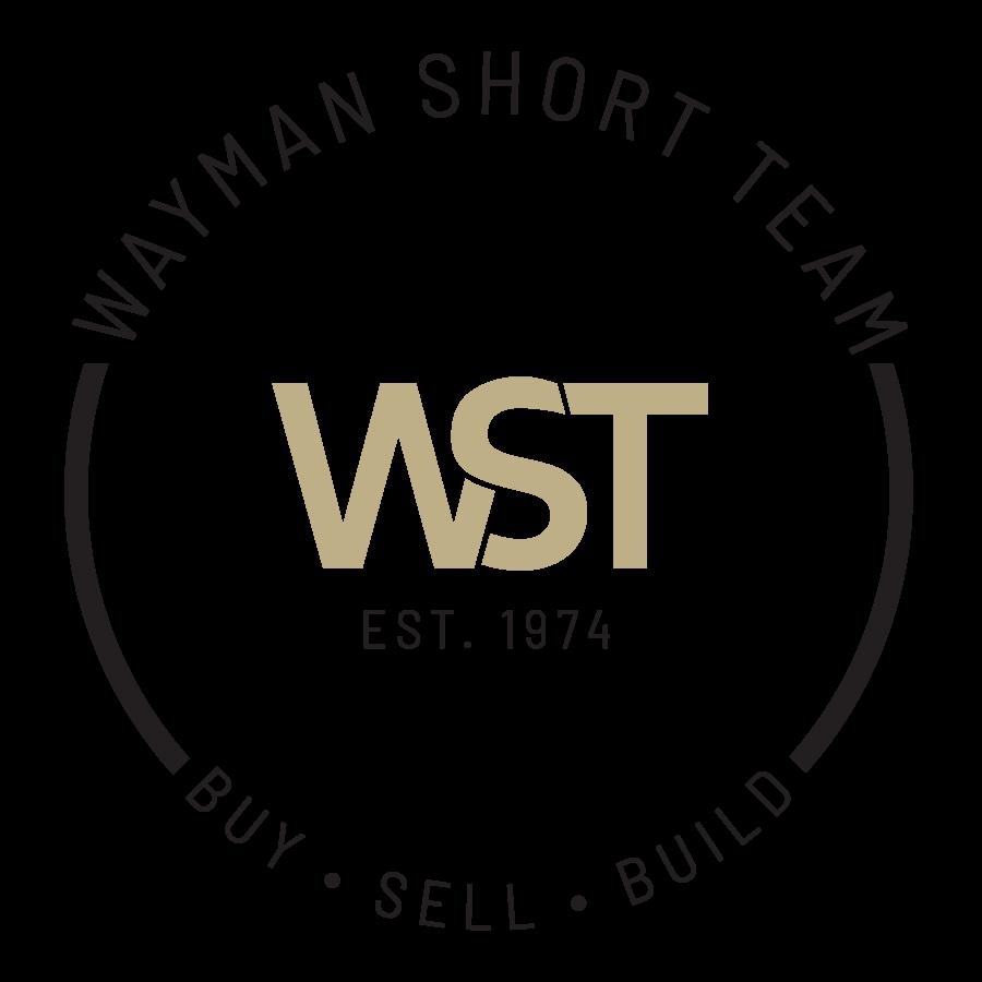 web logo transparent